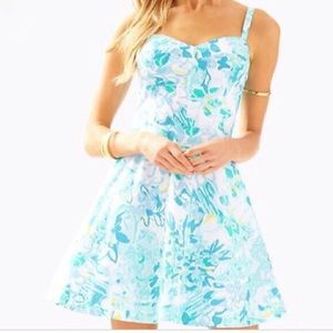 NWT Lilly Pulitzer Willow Dress In A Pinch